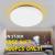 Xiaomi Yeelight Guangcan YLXD50YL 220V 50W Ceiling Light